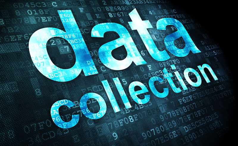 it-consulting-with-cerberus-data-collection